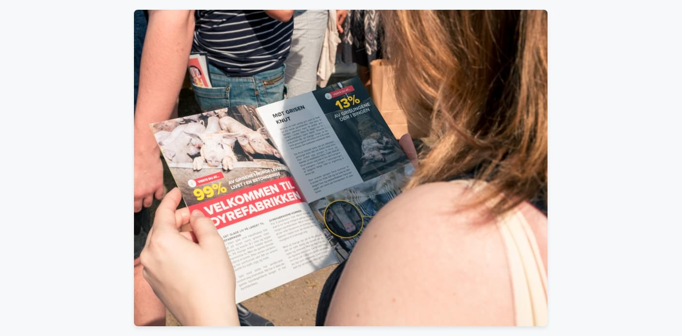 girl reading Anima magazine in the sun